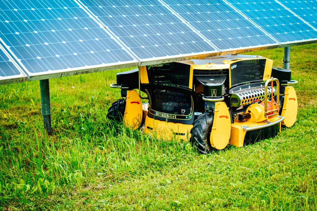 Spider Mower Cutting Grass Underneath Solar Panels